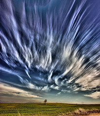 Wild sky photo by Wendy Rauw