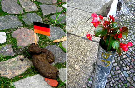 Berlin Dog Shit