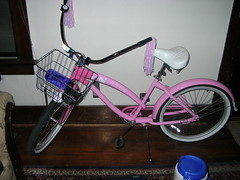 Kitty Cruiser