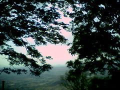 Horsley hills