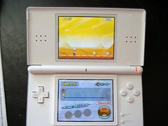 DS Lite Mario