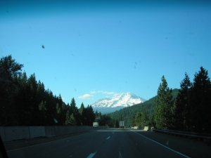 Mount Shasta from the North