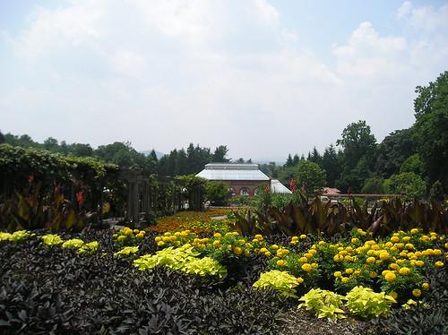 b-more gardens 2