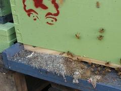 Beekeeping 2047