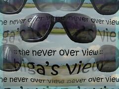 higa's view