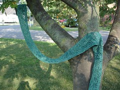 Branching Out Scarf 1