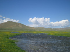 Typical Mongolian scenery