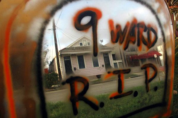 work of photojournalist David Rae Morris