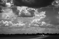 Volare photo by Lucrezia Cosso