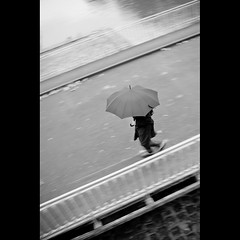 Because of rain photo by Zed The Dragon
