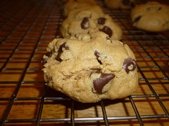 Flourless Peanut Butter-Chocolate Chip Cookies photo by steamboatwillie33