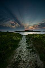 The Path photo by Tony N.