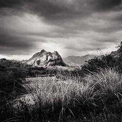 Mindoro Occidental photo by cardijo
