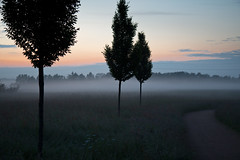 Ground fog photo by Teelicht