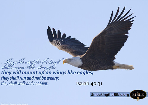 Mount Up on Wings like Eagle Isaiah 40:31 photo by UnlockingTheBible