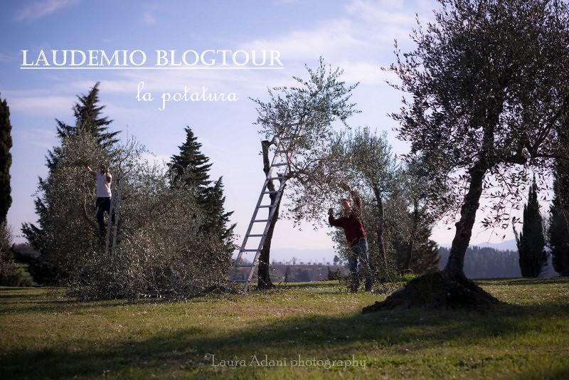 laudemio marzo 2014-7581-2