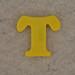 Magnetic Letter T