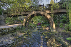 Wood Bridge at Crystal Springs Rhododendron Garden in Portland Oregon - HDR photo by David Gn Photography