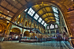 ...Natural History Museum... photo by Numan Q.