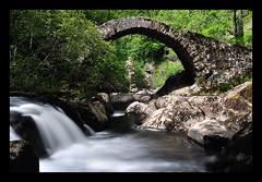 Le pont roman du Parayre, Peyrusse-le-Roc, Aveyron photo by lyli12