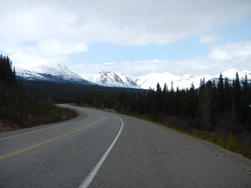 Everyday for 7 Weeks - Day 21 - Whitehorse to Dease Lake