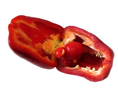 Pregnant Pepper photo by Batikart
