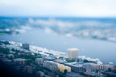 Lake Union photo by daniellih