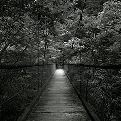 beyond the bridge photo by kkzyk