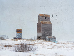 Prairie Twins photo by Harry2010
