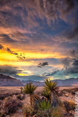 Red Rock Canyon photo by Eddie 11uisma