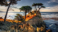 Pebble Beach Icon photo by Charlie Stinchcomb