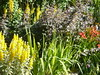 pepiniere le jardin du prahor