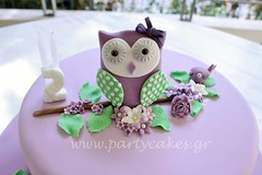 Owl cake to match the invitation the customer showed me. Matching cake pops and macaron. photo by Party Cakes By Samantha