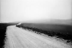 A road to walk photo by p1r0 (Ludovico Poggioli)