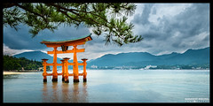 The great torii of Itsukushima Shrine [explored 2015-03-28] photo by Alexander.Weichsel.Photography