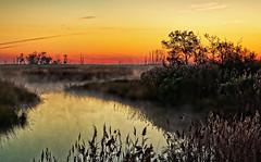 Misty Marsh Morning photo by zuni48