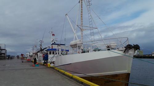 2013-0721 783 Andenes Walvissafariboot