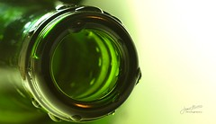 Green Bottle - Macro Mondays: Wet photo by James Milstid