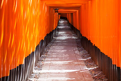 Fushimi Inari-Taisha [Explored] photo by aluarts