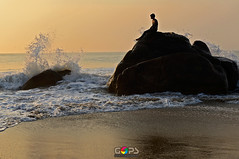 The splash of life photo by GOPAN G. NAIR [ The World through my Lens ]