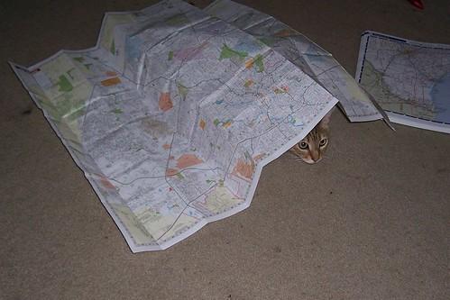 springs&map