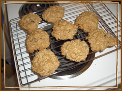 oatmeal, raisin & walnut cookies