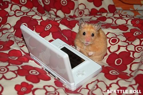 Ratón con una Nintendo DS