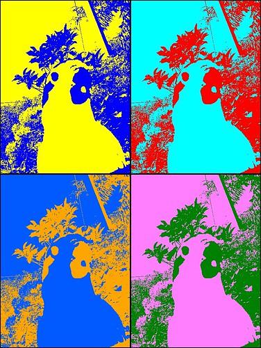 Parrot  Warhol'd
