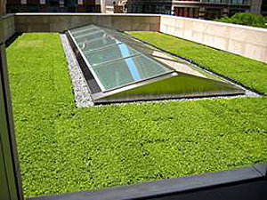 chicago mac apple store green roof