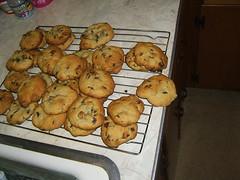 cookiekids 003