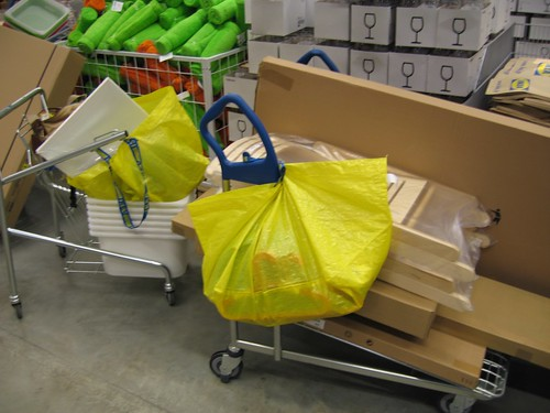 our carts after we'd finished shopping at ikea