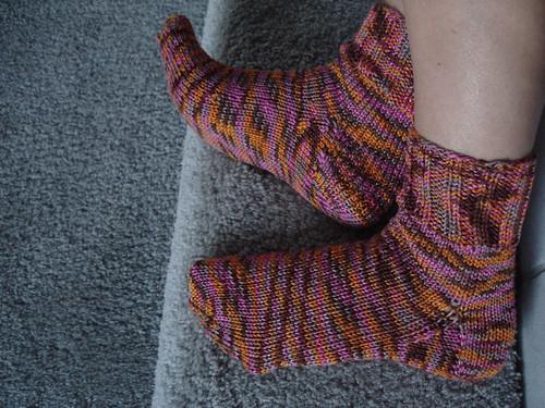 sockiddy sock socks