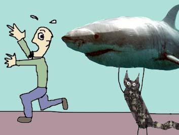 Mokey w/ shark