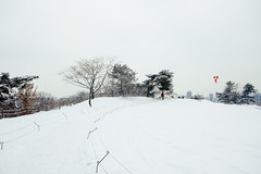 January Snow photo by stuckinseoul